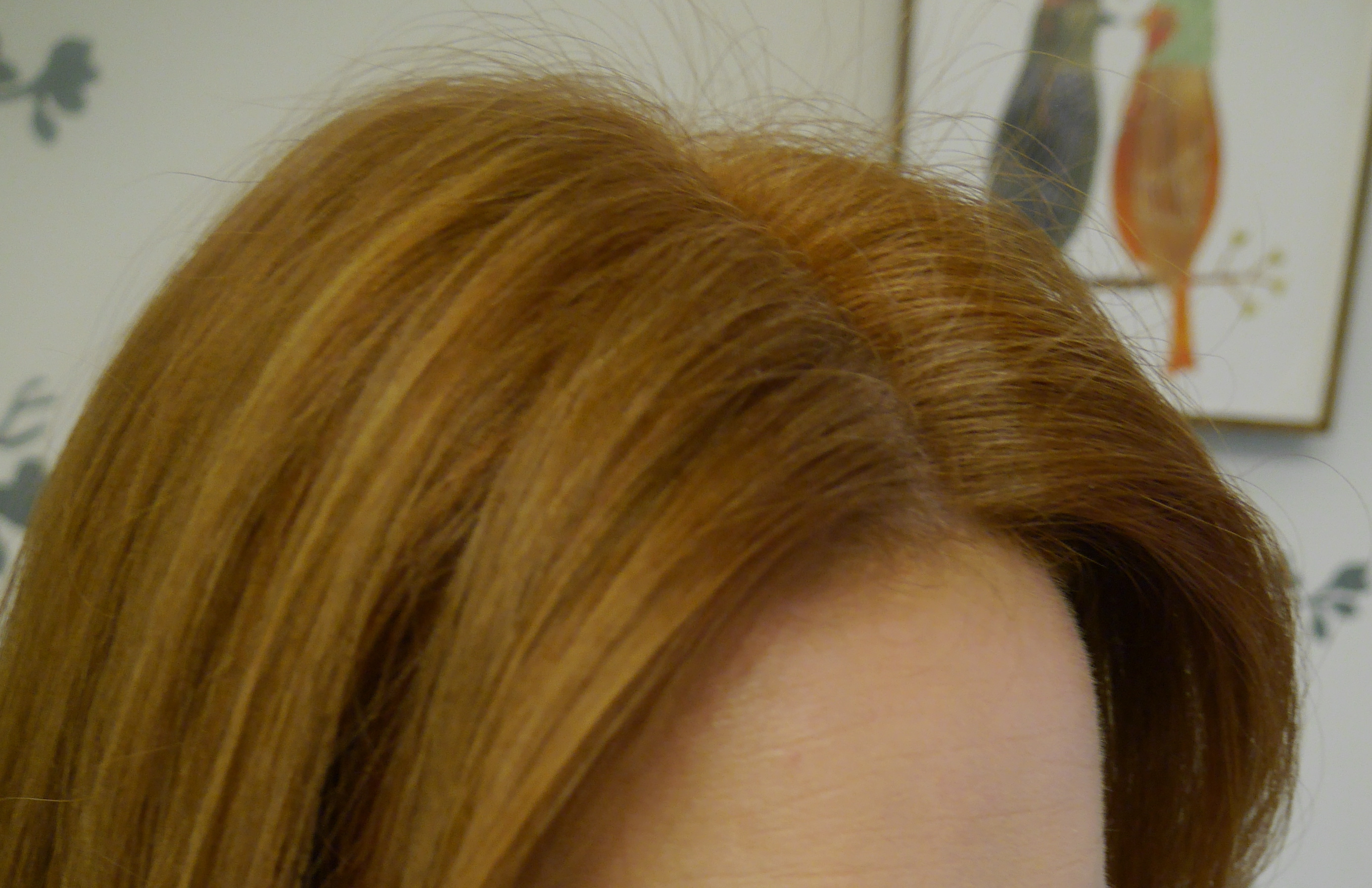 "10 days after coloring. Hair has faded to my desired shade, but with some ""sheerness"" at roots."